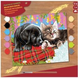 Pictura pe numere Caine si pisica