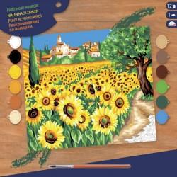Pictura pe numere Floarea soarelui