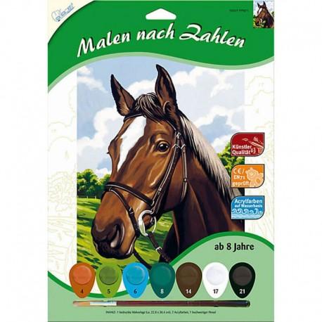 Pictura pe numere Portret cal