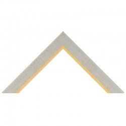 Profil rama plastic 2303
