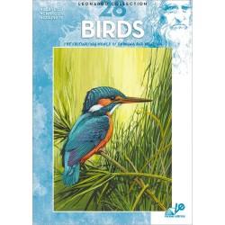 Manual Leonardo Birds