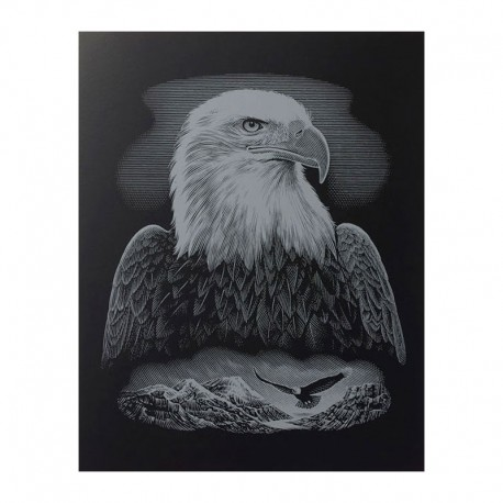 """PAINT BY NUMBERS JUNIOR KIT GRAVURA """"SILVER EAGLE"""""""