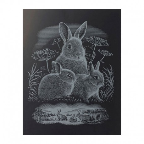 """PAINT BY NUMBERS JUNIOR KIT GRAVURA """"SILVER RABBITS"""""""