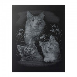"PAINT BY NUMBERS JUNIOR KIT GRAVURA ""SILVER THREE KITTENS"""
