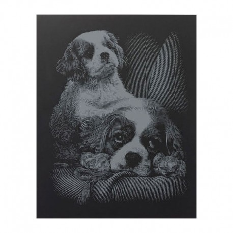 "PAINT BY NUMBERS JUNIOR KIT GRAVURA SILVER ""SPANIELS"""