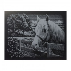 "PAINT BY NUMBERS JUNIOR KIT GRAVURA SILVER ""PONY"""