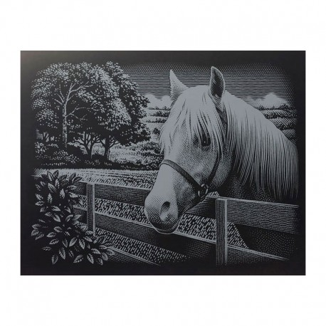 """PAINT BY NUMBERS JUNIOR KIT GRAVURA SILVER """"PONY"""""""