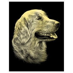 "PAINT BY NUMBERS KIT GRAVURA JUNIOR ""GOLDEN RETRIEVER"""