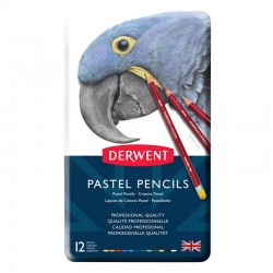 Set 12 creioane Pastel Pencil Derwent